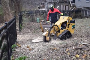stump grinding, stump grinder
